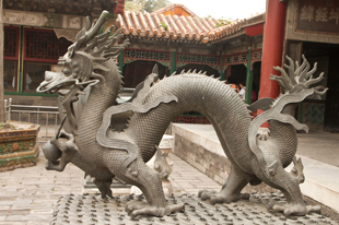 Happy Year of the Dragon!