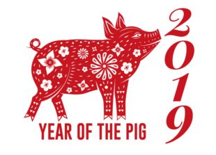 Happy Chinese New Year 2019 Year of the Pig!