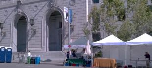 Pure Puer Tea at 8th Annual Asian Heritage Street Festival 5-19-12